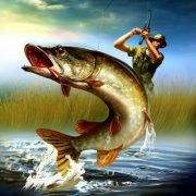 Рыбалка нахлыстом в Латвии на реке Педедзе