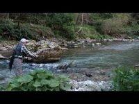 Больно уж красивая сербская речка - Градац! Мы сделали короткие видеозарисовки с нашей апрельской поездки, без монтажа и музыки - просто живой звук