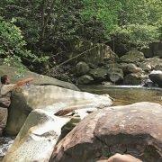 Сокровище кавказских рек