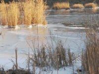 Щука на спиннинг зимой с лодки