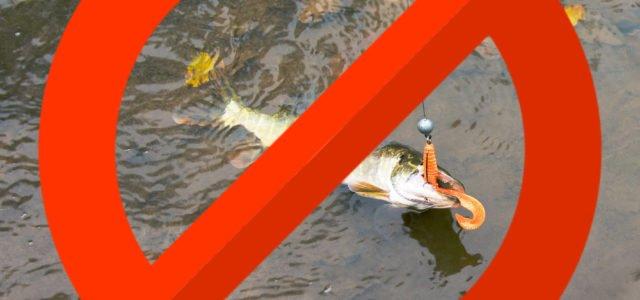 Когда нельзя ловить рыбу