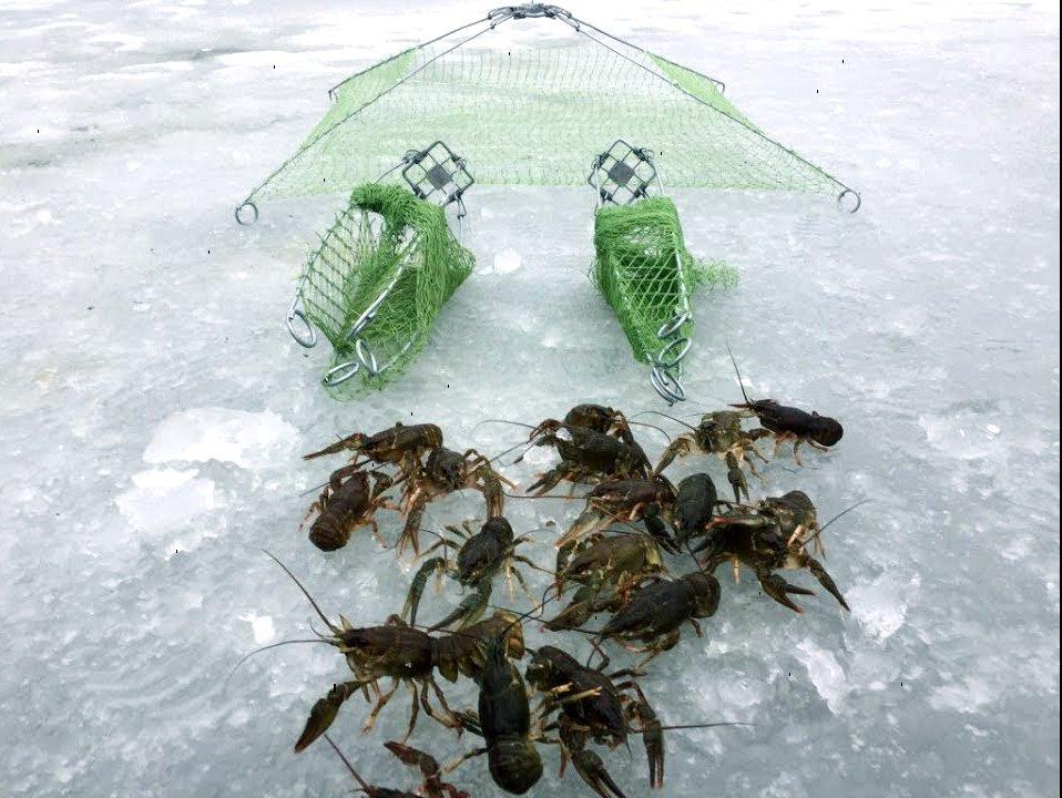 ловить раков зимой