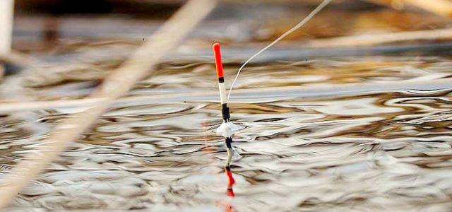 Ловля рыбы на поплавок когда нельзя на спиннинг
